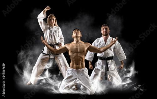 Photo  Three martial arts masters, karate, taekwondo practice