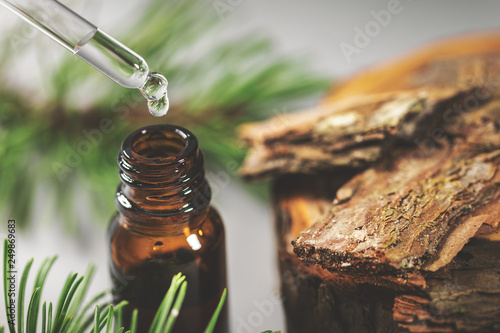 Vászonkép  pine bark tincture dripping from glass pipette