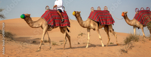 Photo Camels safari in the sand dunes during tourists desert rides in Dubai, United Ar