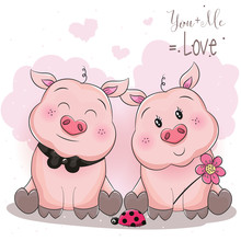 Cute Piggy Couple With Flower