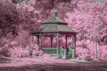Garden Gazebo With Lush Infrared Colors