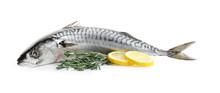 Tasty Raw Mackerel Fish On White Background