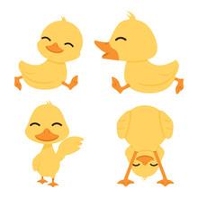 Cute Little  Yellow Ducks Set