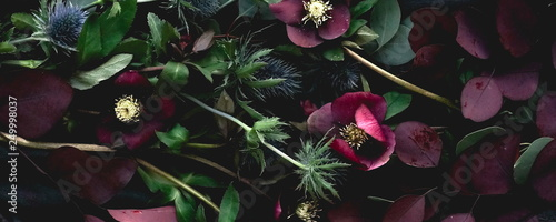 Flowers composition background banner. Bouquet of purple flowers Helleborus on a dark background. Low key.top view.