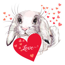 Valentine Love Greeting Card With Pretty Bunny And Red Hearts