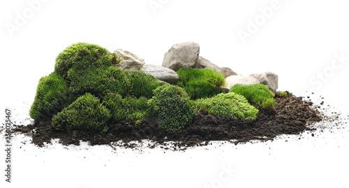 Green moss with dirt, soil ...