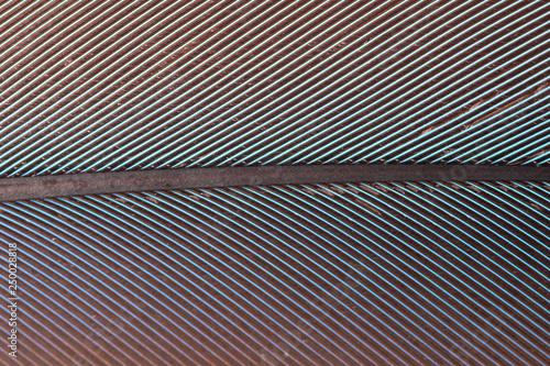 Aluminium Prints Macro photography Macro colorful feather pattern