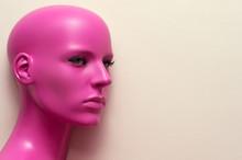 Portrait Bald Woman Mannequin