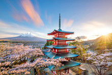 Mountain Fuji And Chureito Red Pagoda With Cherry Blossom Sakura