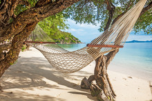 Hammock Between Green Trees On The Tropical Beach Near The Sea With Turquoise Water