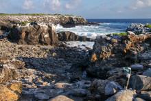 Coast Of Espanola Island, Galapagos National Park, Ecuador.