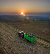 Aerial View On The Combine Working On The Large Sunflowers Field
