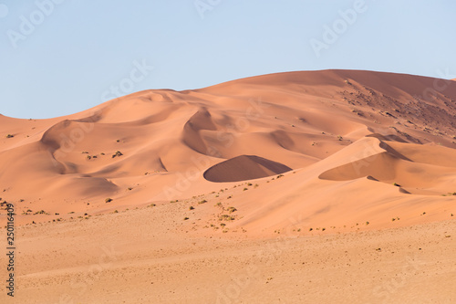 Fotografie, Obraz  African landscape, beautiful red sand dunes and nature of Namib desert, Sossusvl