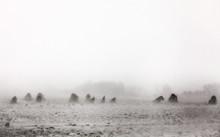 Snow And Wind Pummel Amish Hay...
