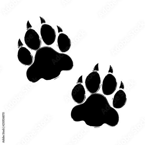 Valokuvatapetti Raubtier Pfoten Bär/Tiger/Wolf