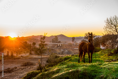 Rio Tinto landscape at sunrise