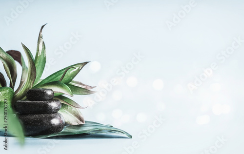 Poster Spa Stack of black hot stones with green leaves at light blue background with bokeh. Massage treatment . Spa and wellness equipment. Beauty, healthy lifestyle and body care concept. Template or banner