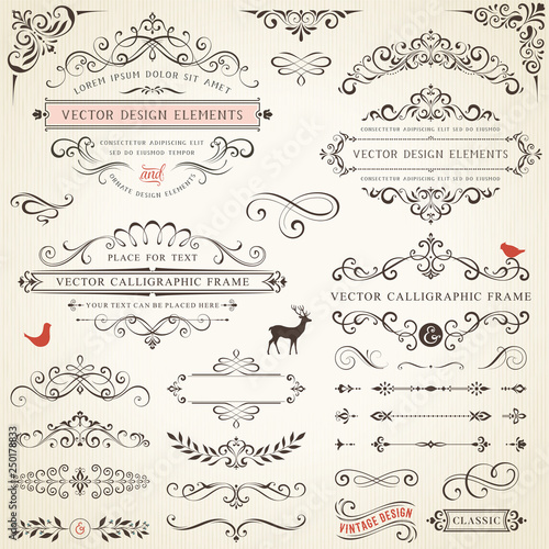 Photo  Ornate retro labels, flourishes elements, calligraphy swirls, corner ornaments and frames