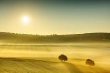 Idyllic View, Foggy Tuscan Fie...
