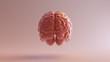 Pink Porcelain Anatomical Brain Back 3d illustration 3d render