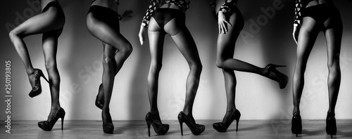 Many women legs in stocking posing, black and white