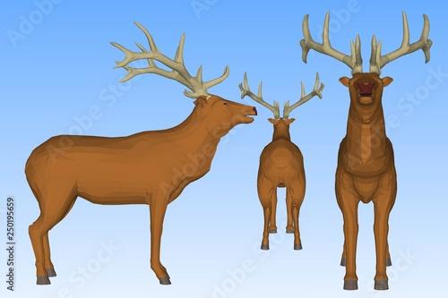 Poster Antilope deer on white background