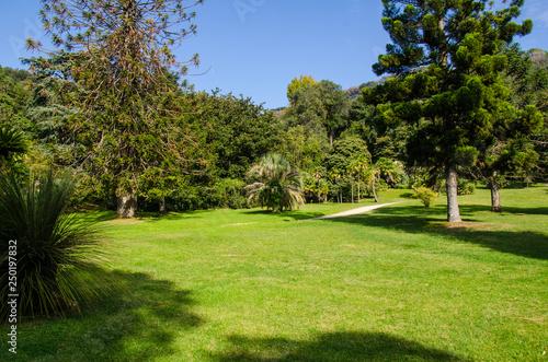 Fotografie, Obraz  Reggia di Caserta - Giardini