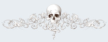 Vintage Decorative Element Engraving With Baroque Ornament And Skull