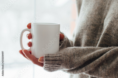 Close up of women's hands holding white mug with blank copy space scree for your advertising text message or promotional content, sweet coffee or tea Fototapet