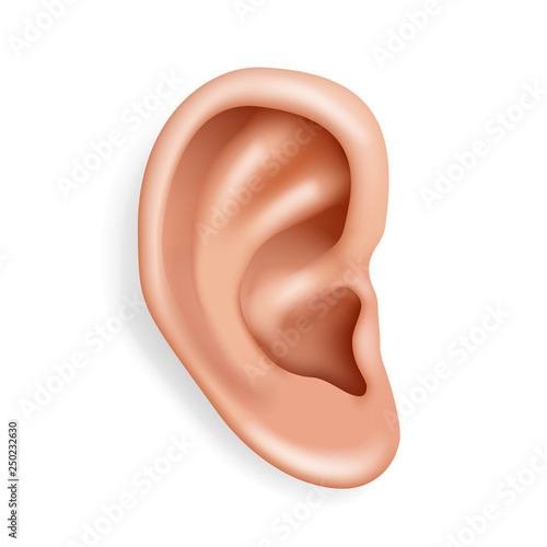 Leinwand Poster Human ear organ hearing health care closeup realistic 3d isolated icon design ve