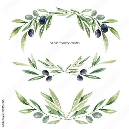 Fotografía  watercolor olive brunches