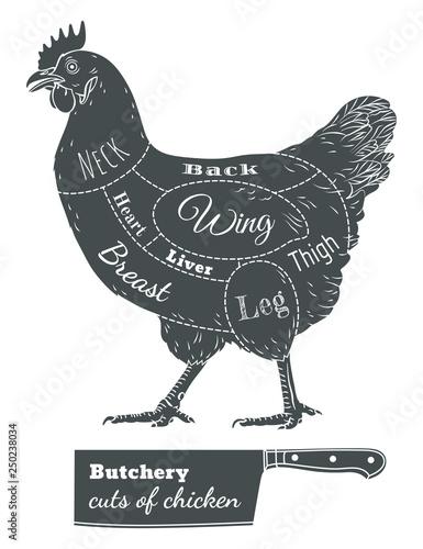 083f307fed9 Chicken hen fresh, roster isolated logo, white back. For shop, farm ...