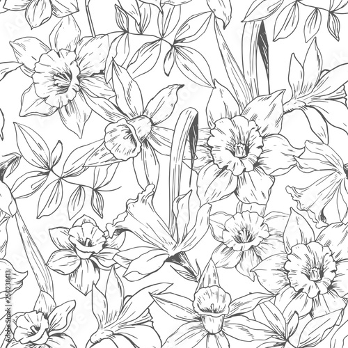 Fotomural Seamless pattern with daffodils flowers. Vector