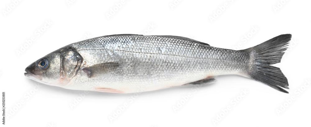 Fototapeta Tasty fresh seabass fish on white background