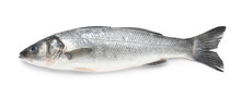 Tasty Fresh Seabass Fish On Wh...