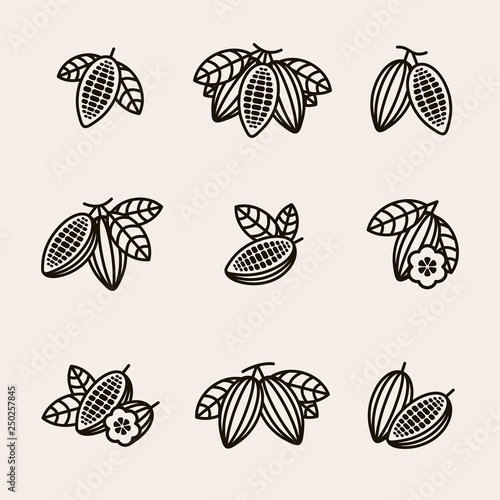 Fotomural Cacao beans set. Vector