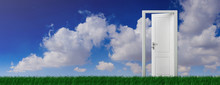 Open Door On Green Grass, Blue Sky Background, Banner. 3d Illustration