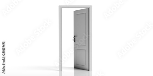 Fotografie, Obraz  White decorated open door isolated on white background