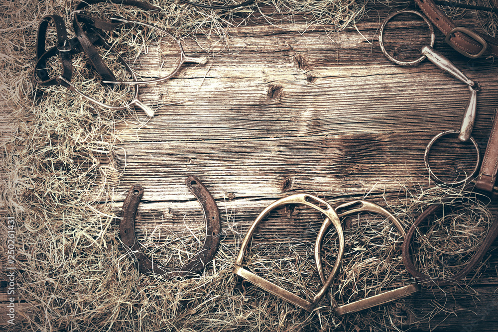 Fototapeta Horse equipments on wooden background with empty space for text, close up vintage view