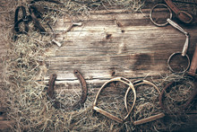 Horse Equipments On Wooden Bac...