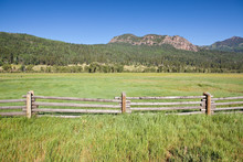 Wooden Fence And Meadow