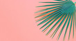 Leinwandbild Motiv Fan Palm Leaf on Living Coral colored background. Minimalism. Contemporary Art gallery Style. Creative fashion concept. Close-up tropical plant on coral.