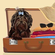 A Dog In A Suitcase. Baggage. Vector Illustration.