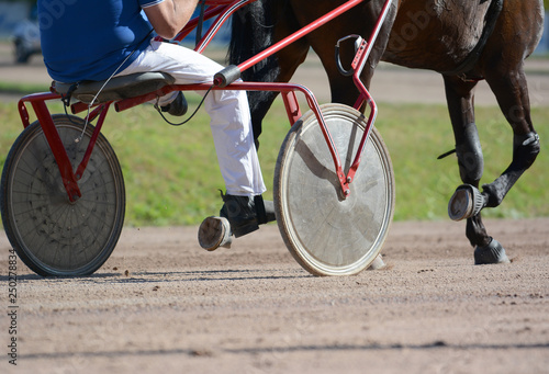 Fotografiet  Legs of a trotter horse and horse harness