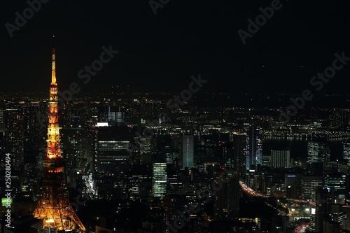 Spoed Foto op Canvas Tokyo 東京の夜景