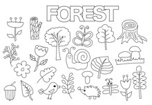 Forest Set Of Icons And Objects. Hand Drawn Doodle Nature Flora And Fauna Design Concept. Black And White Outline Coloring Page Game. Monochrome Line Art. Vector Illustration.