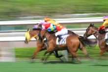 Held In Shatin Racecourse On Gamble Betting