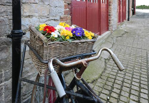 La pose en embrasure Velo Vintage bicycle with flowers in basket.