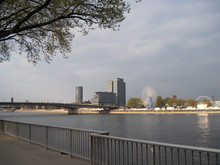 Cologne View