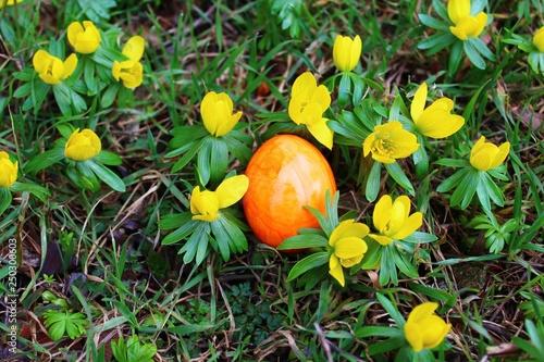Fotografie, Obraz  Fröhliche Ostergrüße